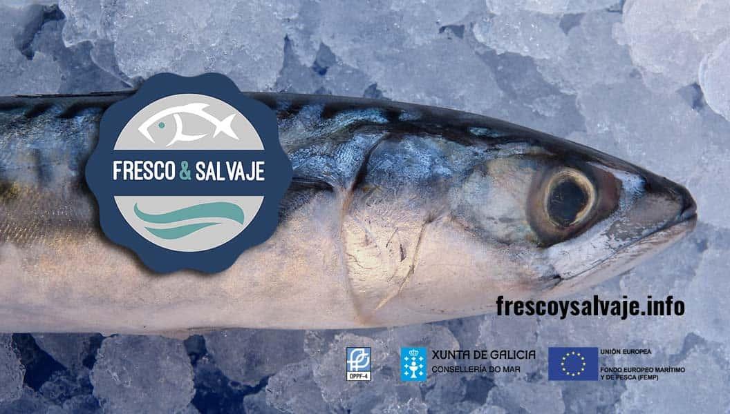 Marca de garantía «Pescado fresco y salvaje»