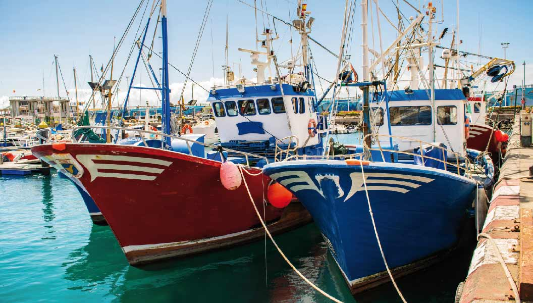sector_pesquero_sinerxia
