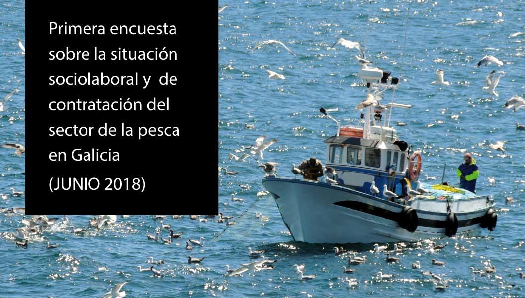 Situación socio laboral del sector pesquero en Galicia
